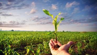 Cooperazione, sostenibilità, agricoltura biologica. 24 ottobre, Fano